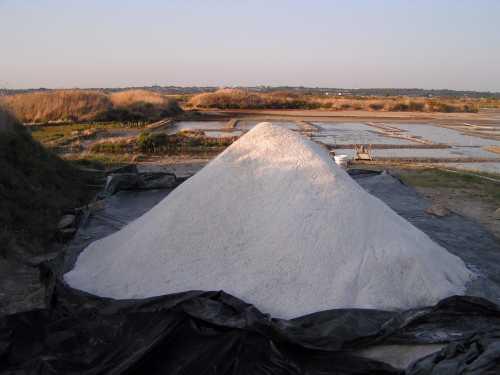 La r colte du sel de mer cuisines et astuces d 39 un for Cuisinier sel